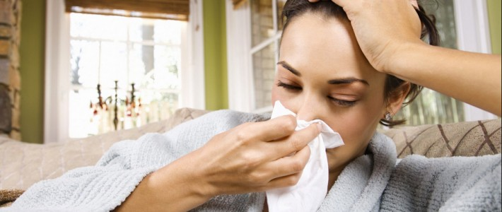 Allergist: A Pest-Free Home Is Important